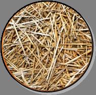 Sonic – Biomasse agricole avec paille